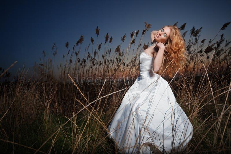 представлять невесты стоковая фотография