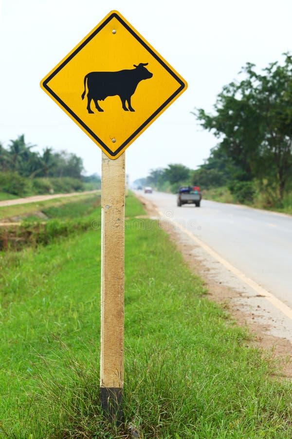 Предупредительный знак коровы стоковая фотография rf