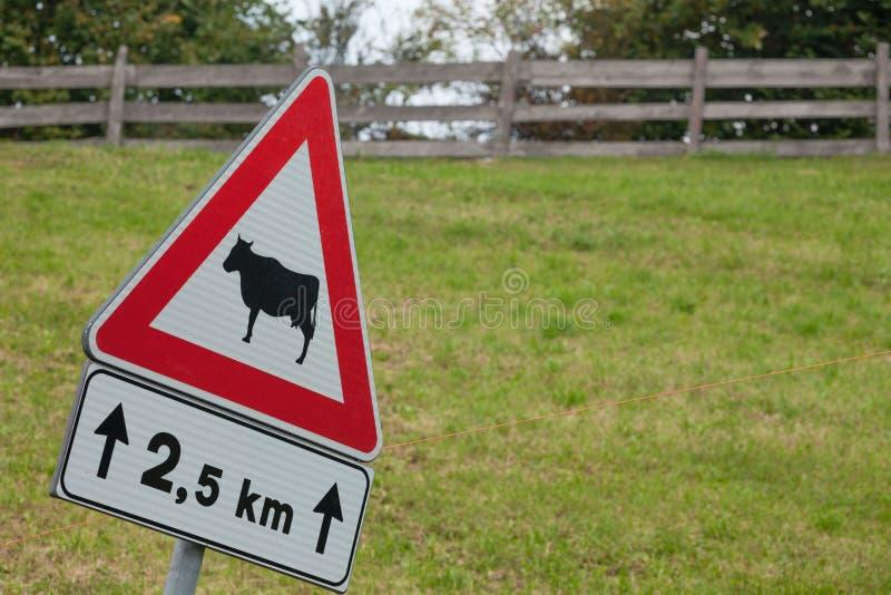 Предупреждая дорожный знак для животного присутсвия длиной итальянская улица горы стоковое фото