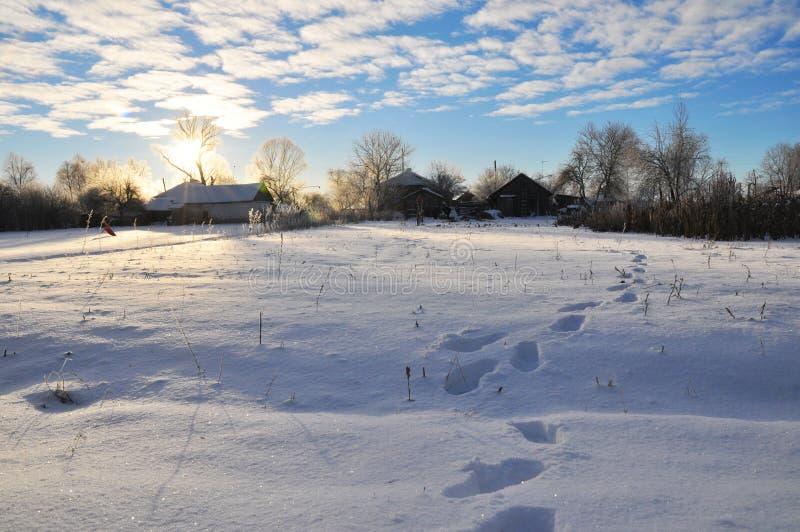 Предыдущее морозное утро в малой украинской деревне черный голубой пейзаж фото footway тонизировал белые древесины зимы стоковые фотографии rf