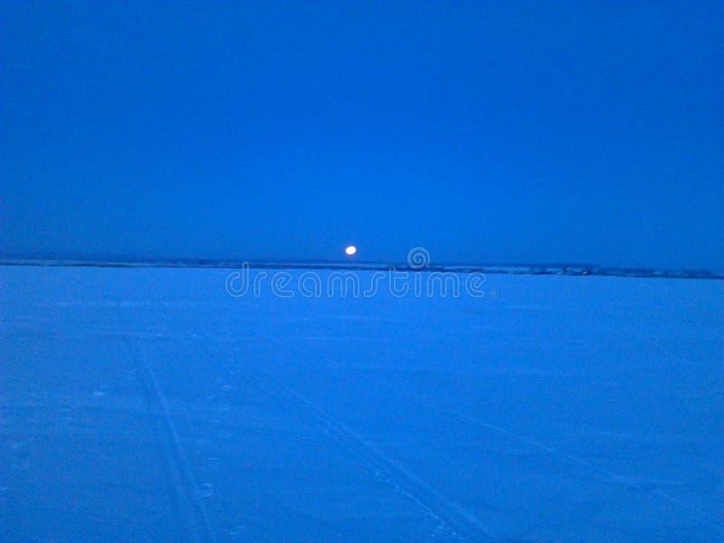 Предыдущее утро зимы стоковое фото