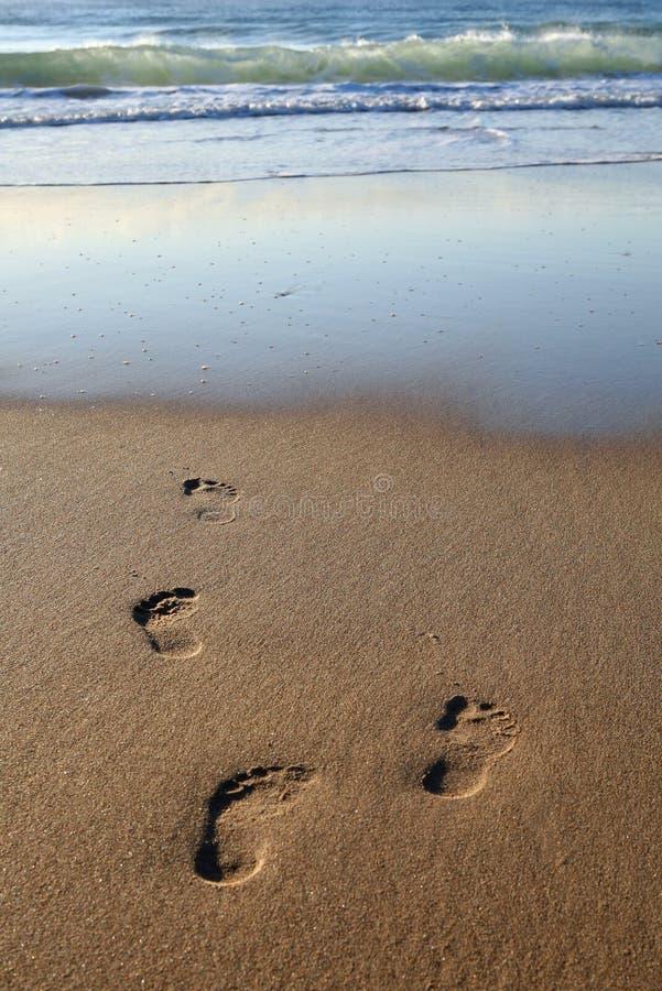 предыдущее утро следов ноги стоковые фото