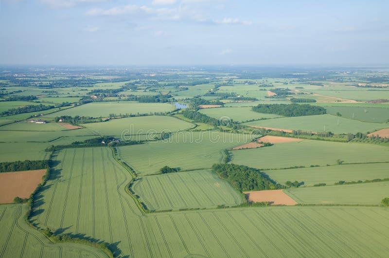 предыдущий зеленый цвет полей над взглядом лета стоковое изображение