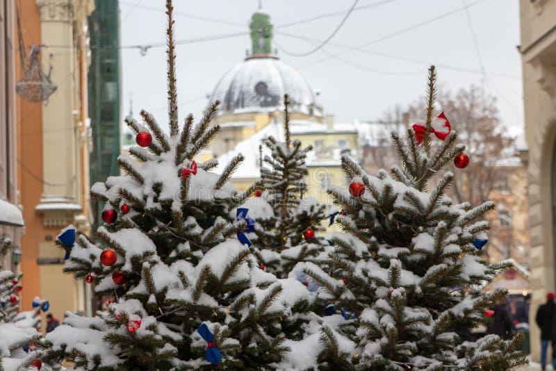 Прекрасная рождественская елка на церковном фоне, множество рождественских деревьев, покрытых снегом в городе стоковые изображения