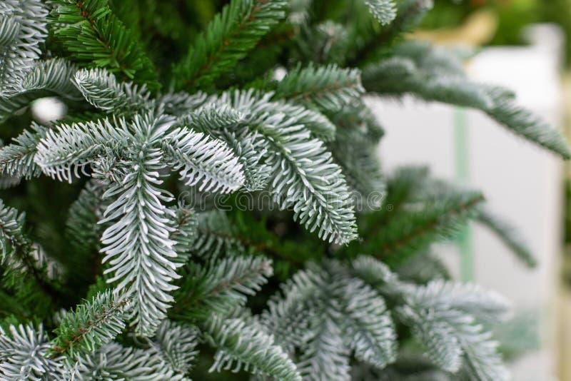Прекрасная рождественская елка с зелеными иглами на фоне фонового фонового фонда Искусственная ели для украшения Нового года и стоковое изображение