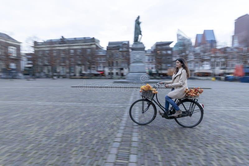Прекрасная элегантная леди на велосипеде стоковое изображение rf