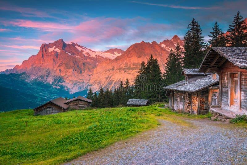 Прекрасное летнее альпийское расположение с деревянными хижинами и горами, Швейцария стоковые фотографии rf