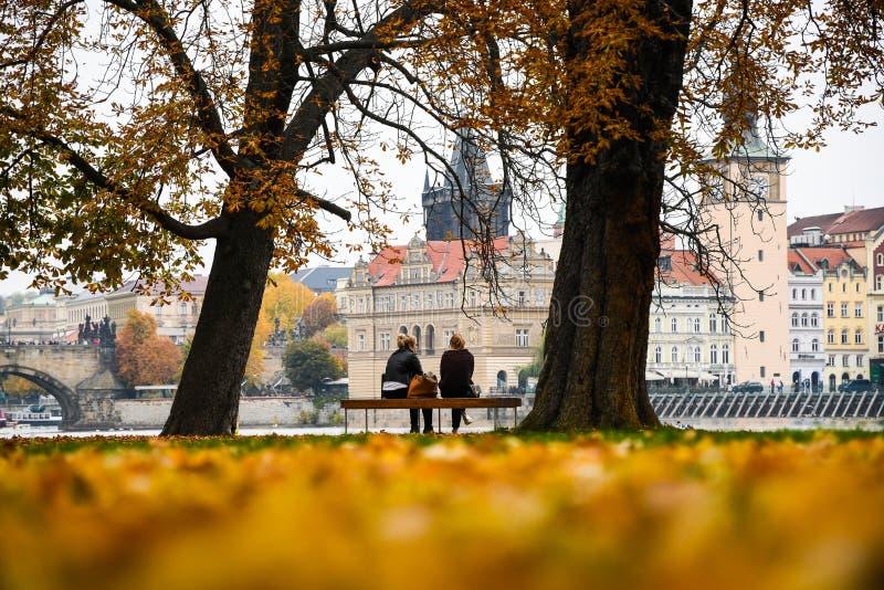 Прекрасный вид на остров стрелков в Осенне Прага, Чехия стоковое фото rf