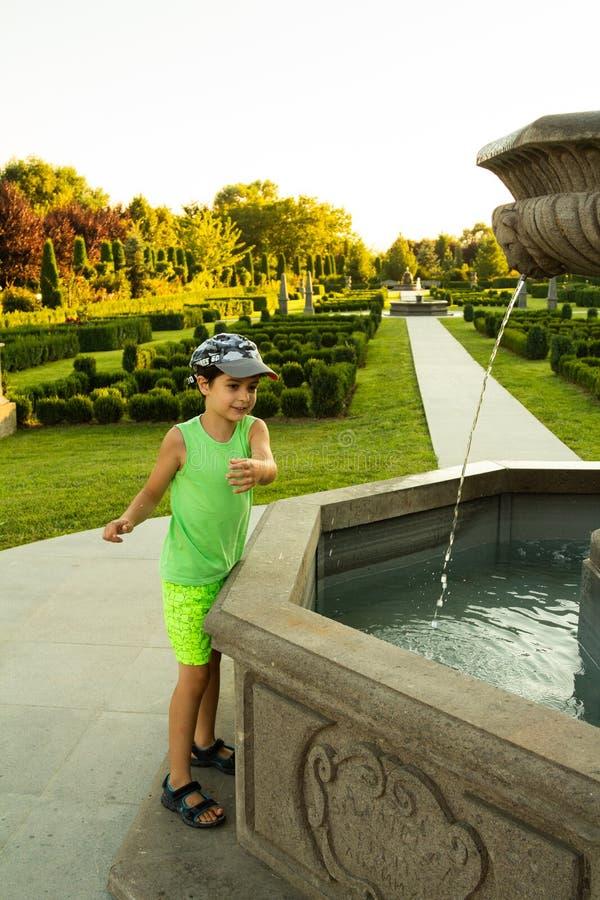 Прекрасный зеленый сад стоковая фотография rf
