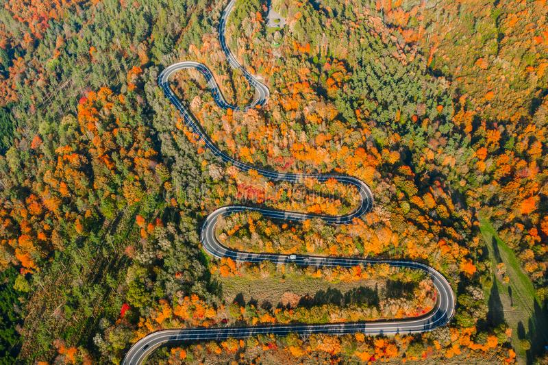 Прекрасный ландшафт горной лесной дороги Вид с воздуха на извилистую дорогу в прекрасном осеннем лесу стоковые фотографии rf