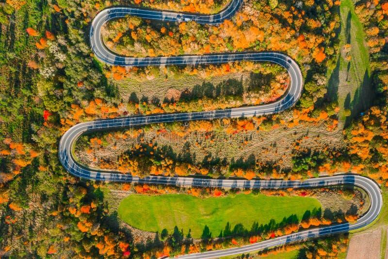Прекрасный ландшафт горной лесной дороги Вид с воздуха на извилистую дорогу в прекрасном осеннем лесу стоковое изображение