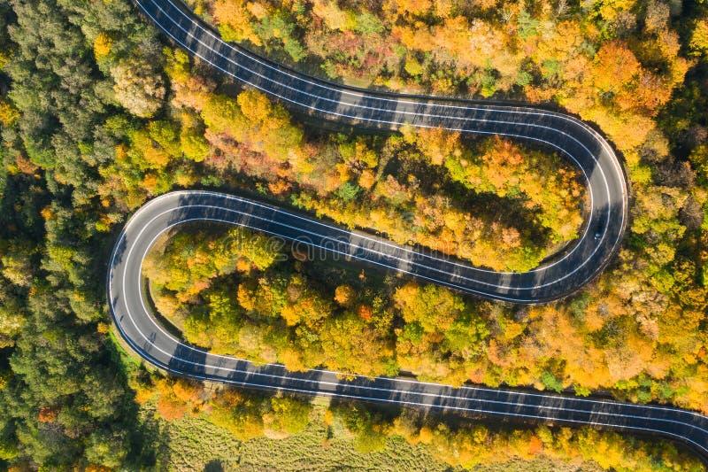 Прекрасный ландшафт горной лесной дороги Вид с воздуха на извилистую дорогу в прекрасном осеннем лесу стоковые изображения rf