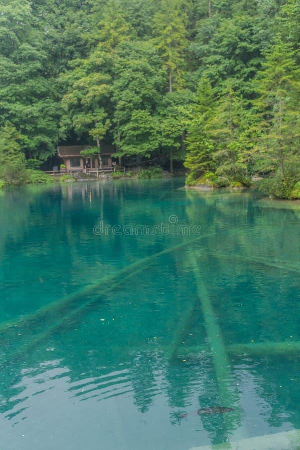 Прекрасный обзорный тур по горам Швейцарии - Блаузи/Швейцария стоковое фото