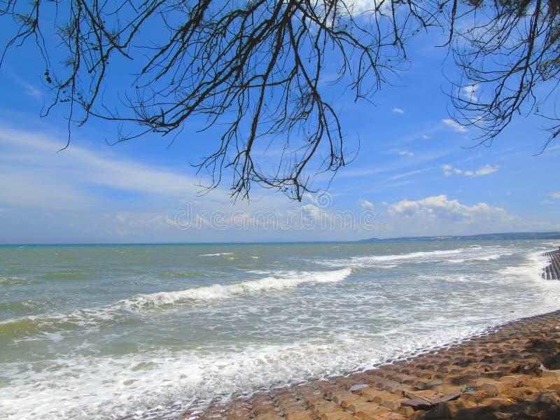 Прекрасный пейзаж для путешествий, солнечная природа пляжа стоковое фото rf