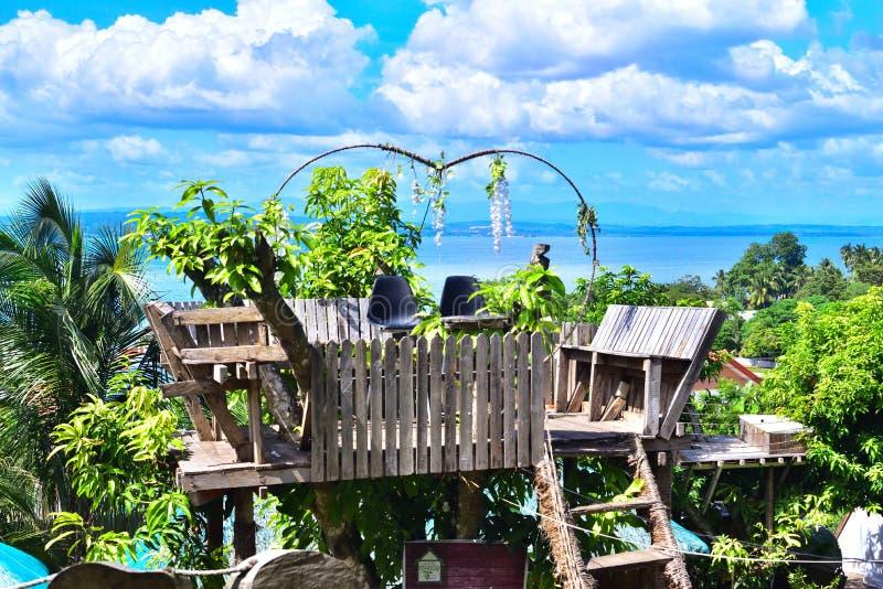 Прекрасный сад выглядя большим морем на Филиппинах стоковые фотографии rf