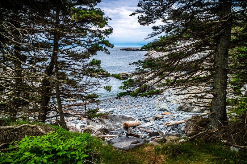 Прекрасный au Haut острова гавани утки в национальном парке Acadia, Мейне стоковая фотография rf