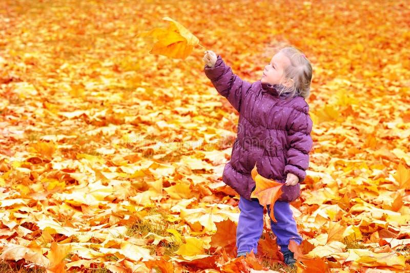 прелестная девушка осени выходит малыш стоковое фото rf