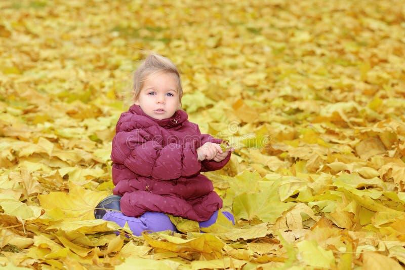 прелестная девушка осени выходит малыш стоковые изображения rf