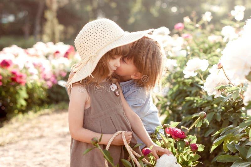Прелестные дети мальчик и поцелуй девушки в пионы садовничают стоковые изображения