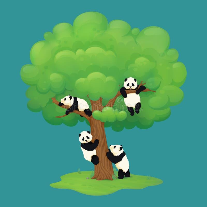 Прелестные новички гигантской панды взбираясь дерево, вися от ветви, отдыхая на суке и стоя на задних ногах около хобота иллюстрация вектора