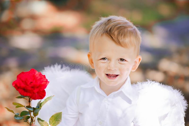 Прелестный мальчик малыша в красной розе удерживания костюма ангела стоковая фотография