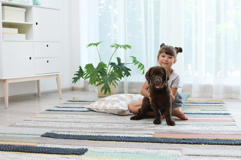 Прелестный retriever и маленькая девочка labrador шоколада стоковые фото