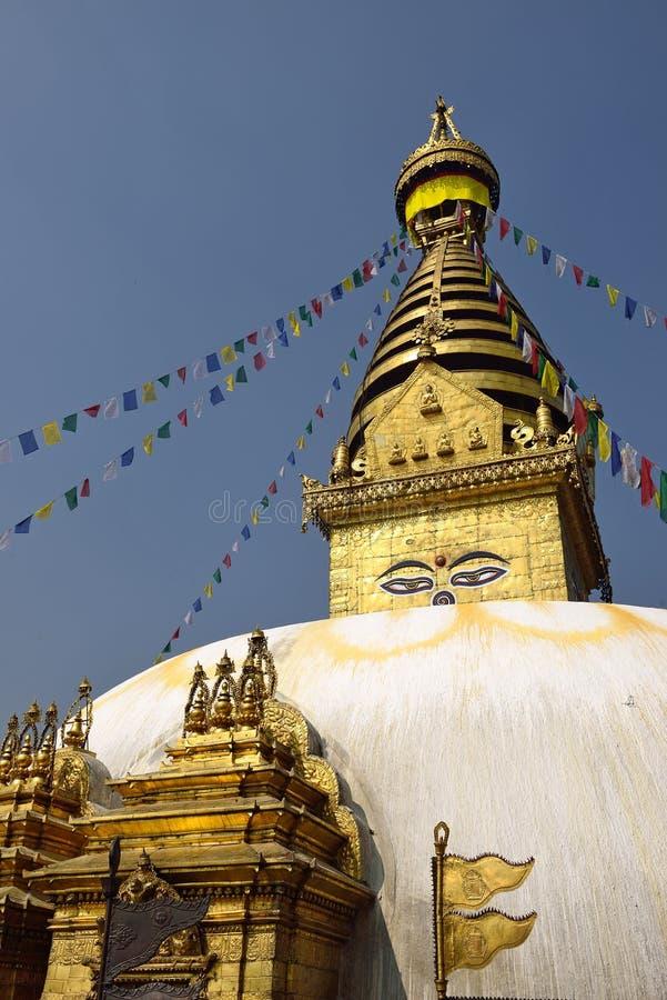 Премудрость eyes, скит Swayambhunath, Непал стоковая фотография rf