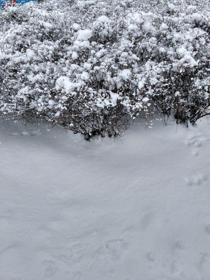 препятствуйте снежку стоковое изображение rf