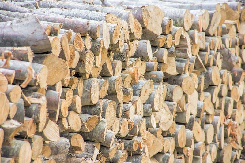 прерванная древесина кучи стоковые фотографии rf