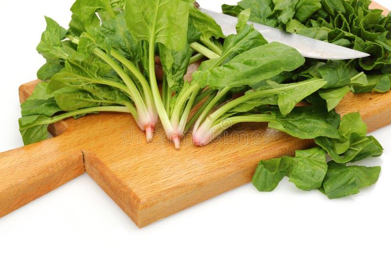 Прерванные шпинат и нож на деревянной доске стоковые фото
