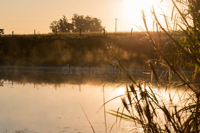 Пресноводный пруд на зоре 02 стоковая фотография rf
