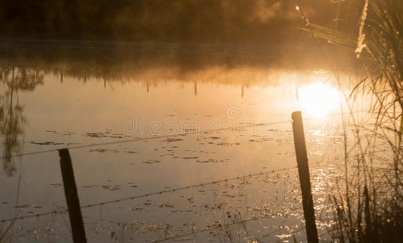Пресноводный пруд на зоре 03 стоковые фотографии rf