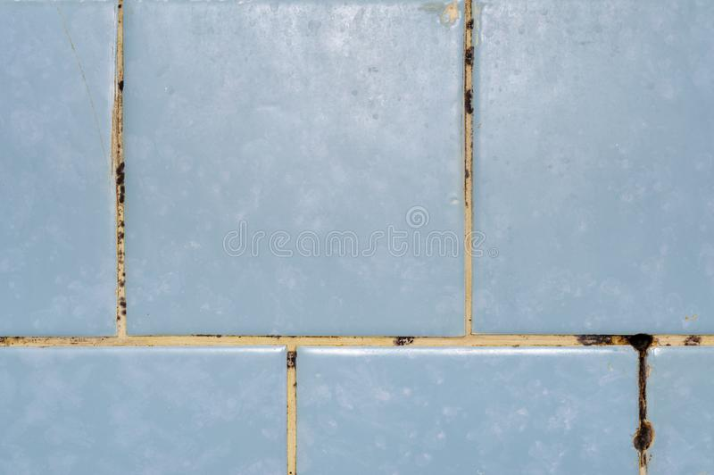 Прессформа в ванной комнате стоковые изображения rf
