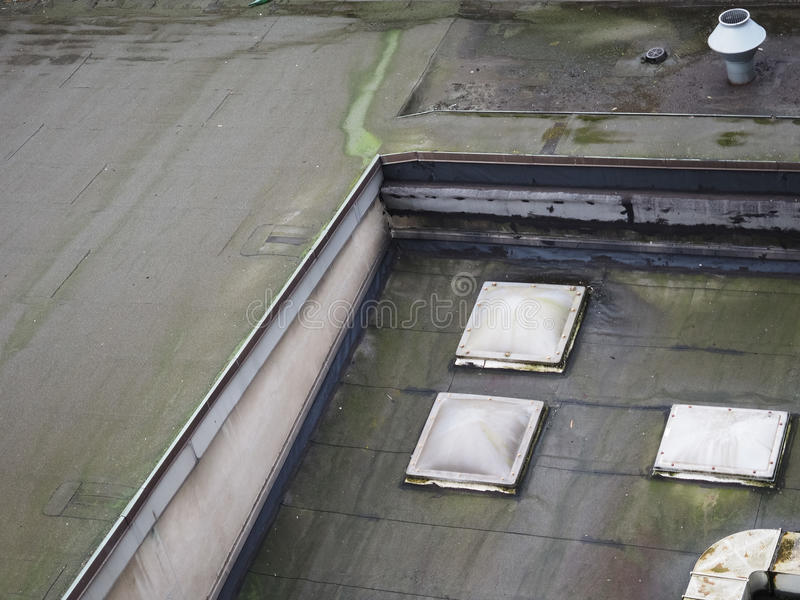 прессформа на плоской крыше стоковая фотография