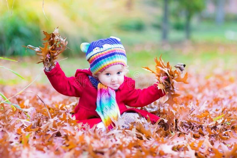 Прелестная девушка малыша с красным цветом выходит в парк осени стоковые фотографии rf