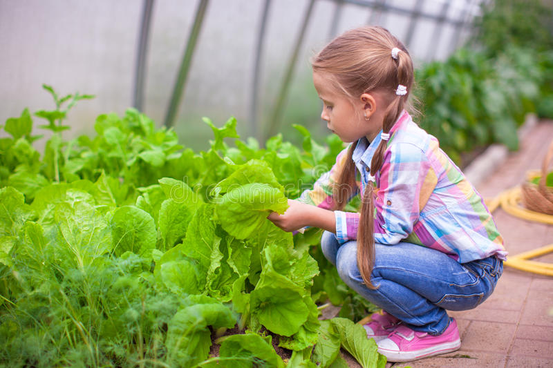 Download Прелестная маленькая девочка жать в парнике Стоковое Изображение - изображение насчитывающей парник, здорово: 40586193