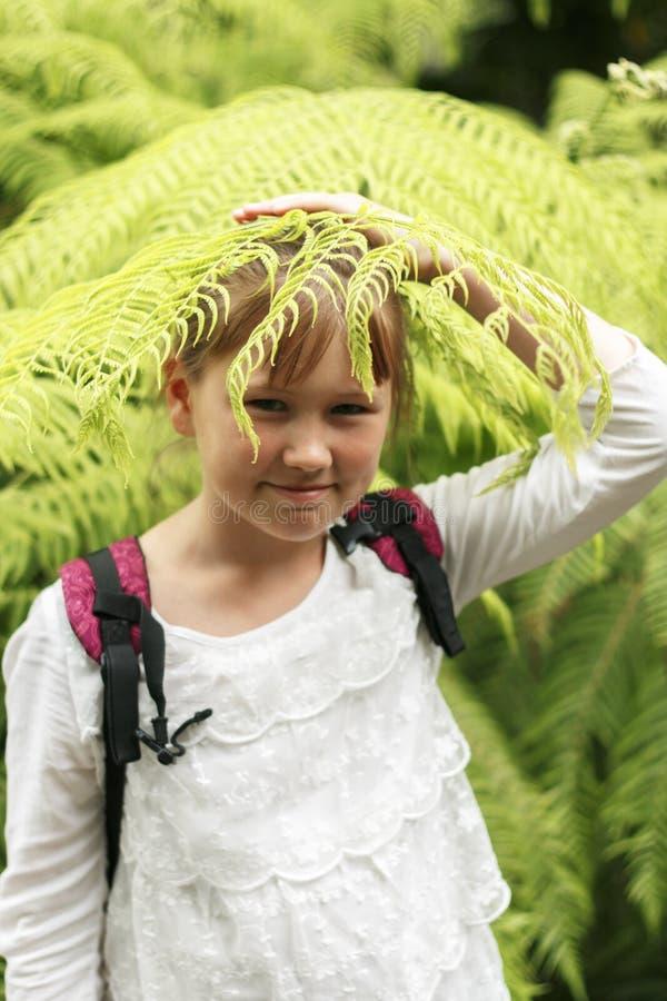 Прелестная маленькая девочка исследует природу внутри стоковое изображение rf