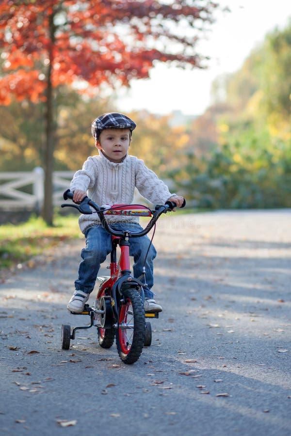 Прелестный мальчик в парке, при его велосипед, уча ехать стоковое изображение rf