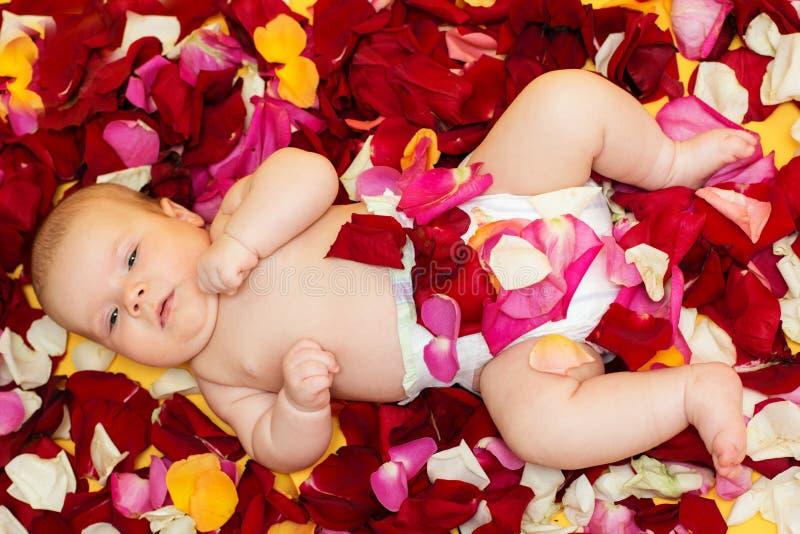 Прелестный ребёнок лежа на лепестке роз стоковые фотографии rf