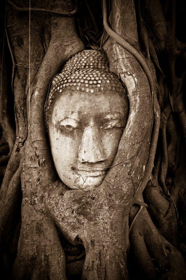 Download Предел Ayutthaya Таиланда Джулиана Стоковое Фото - изображение насчитывающей bucky, вал: 41656044
