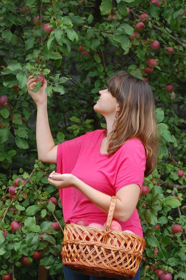 Предназначенная для подростков девушка в саде стоковое изображение