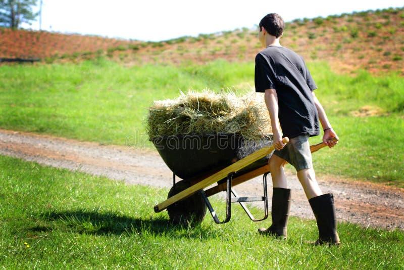 Предназначенные для подростков работы по дому