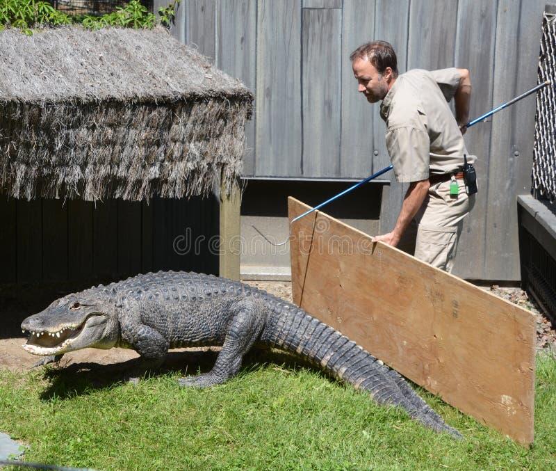 Предохранитель зоопарка Granby стоковое фото
