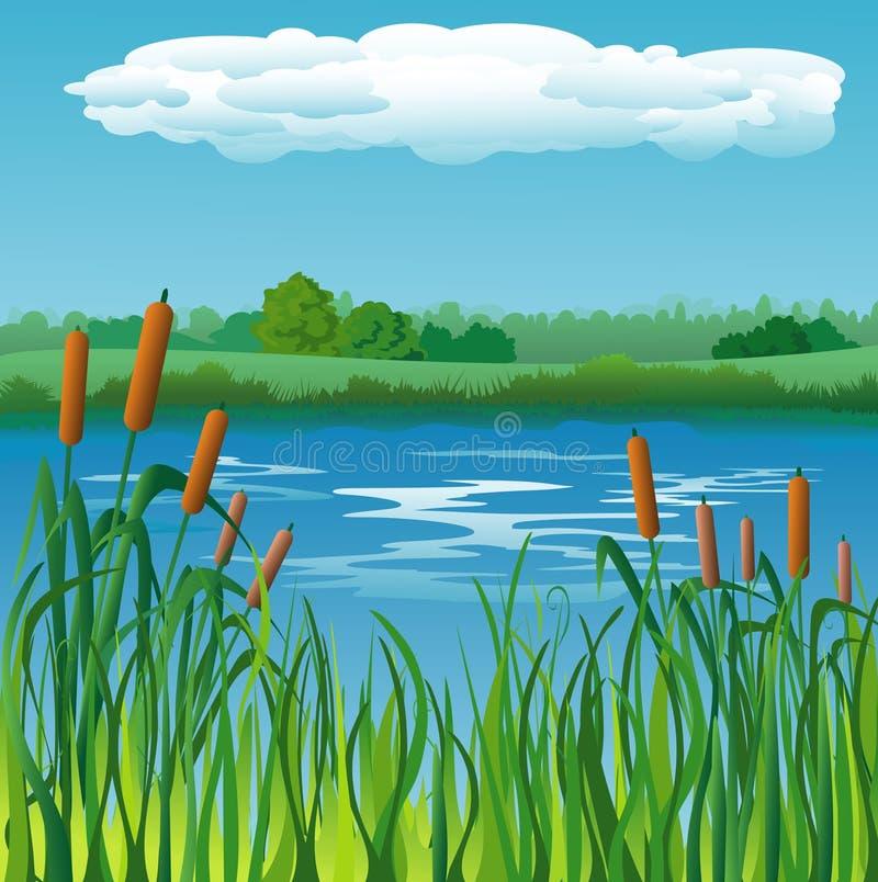 ландшафтном рисунки пруда с камышами позволяют выводить