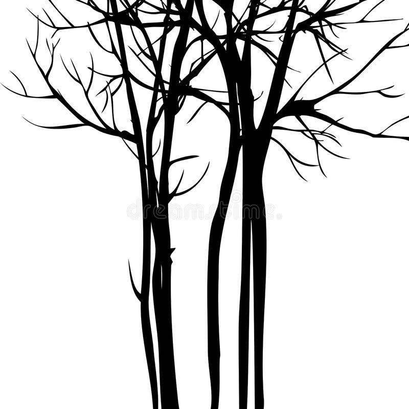 Предпосылка вектора с деревьями иллюстрация вектора
