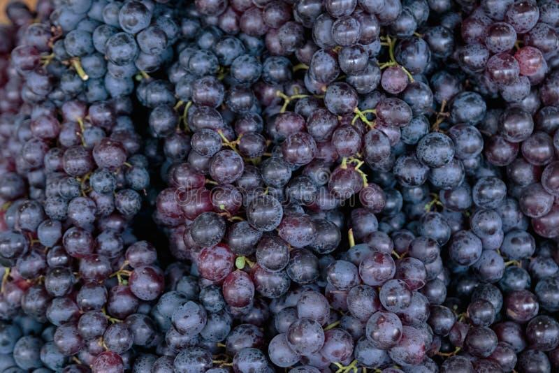 Предпосылка виноградин красного вина стоковое фото