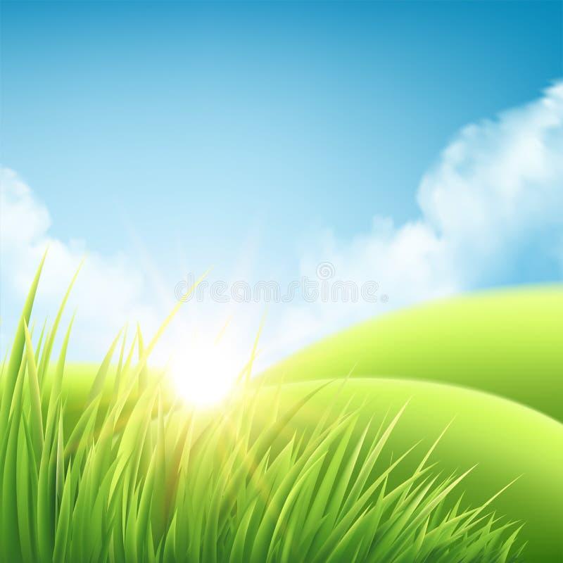 Предпосылка восхода солнца природы лета, ландшафт с зелеными холмами и лугами, голубое небо и облака также вектор иллюстрации при иллюстрация штока