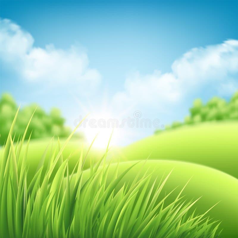 Предпосылка восхода солнца природы лета, ландшафт с зелеными холмами и лугами, голубое небо и облака также вектор иллюстрации при бесплатная иллюстрация