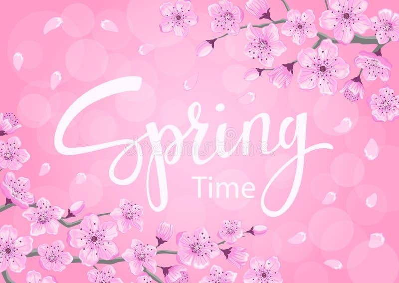 Предпосылка времени весны с цветками вишневых цветов иллюстрация штока