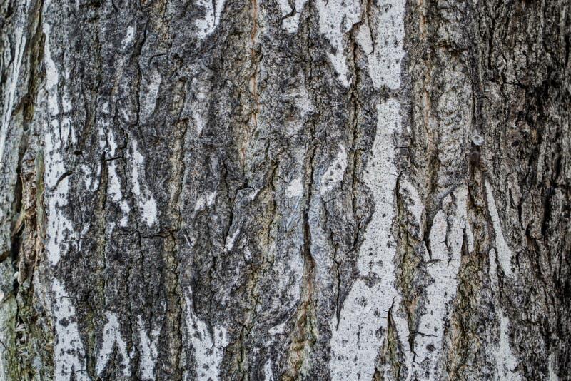 Download предпосылка всходя на борт древесины коричневой части крытой Стоковое Фото - изображение: 84507370